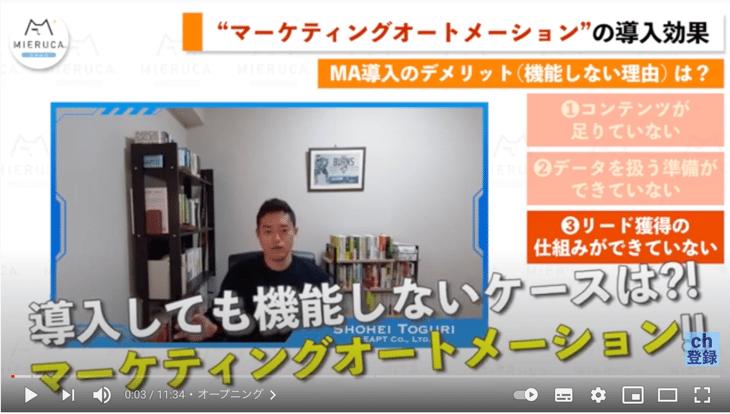 ミエルカ チャンネル出演のお知らせ:MAを導入しても機能しない3つの特徴(デメリット編)
